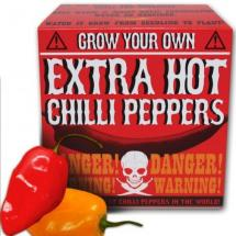 Grow your own - Chilli