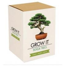 Grow it - Bonsai